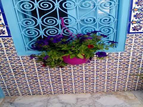 Maison Medina - Tunis - Tunisia