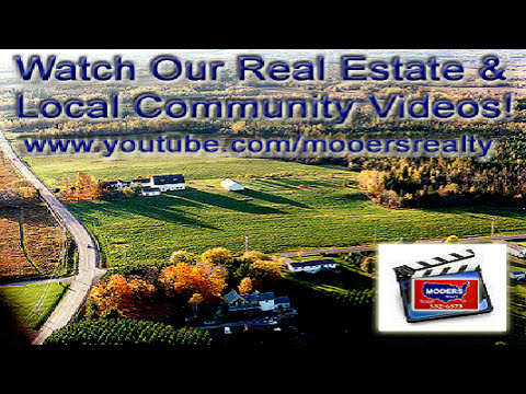 Living On A Maine Lake   Playful Otters Entertain In Early AM.