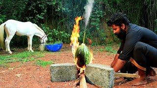 Watermelon Omlette |തണ്ണിമത്തൻ മുട്ട | M4 TECH |