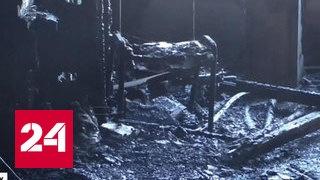 Три версии убийства Гиви
