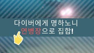[스쿠버다이빙,scubadiving][코브라다이브,cobradive] -한국의 바다- 속초 연병장 포인트