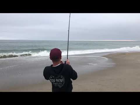 Ventura County Surf Fishing