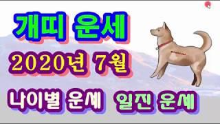 7월 개띠 운세 - 2020년 7월 경자년 계미월 개띠 일진 사주 운세보기