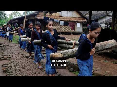 Pilkada di Kampung Adat Suku Baduy
