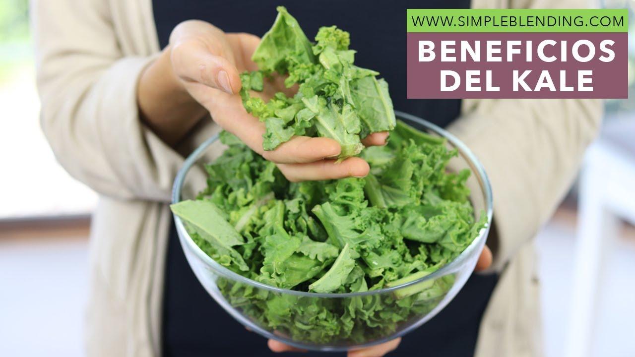 Beneficios Y Propiedades Del Kale Beneficios Col Rizada Youtube