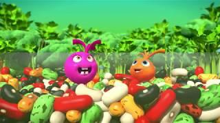 Сушеные томаты в электросушилке