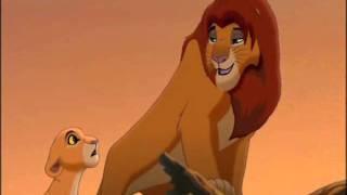 Il Re Leone 2 -  Un' unica realtà