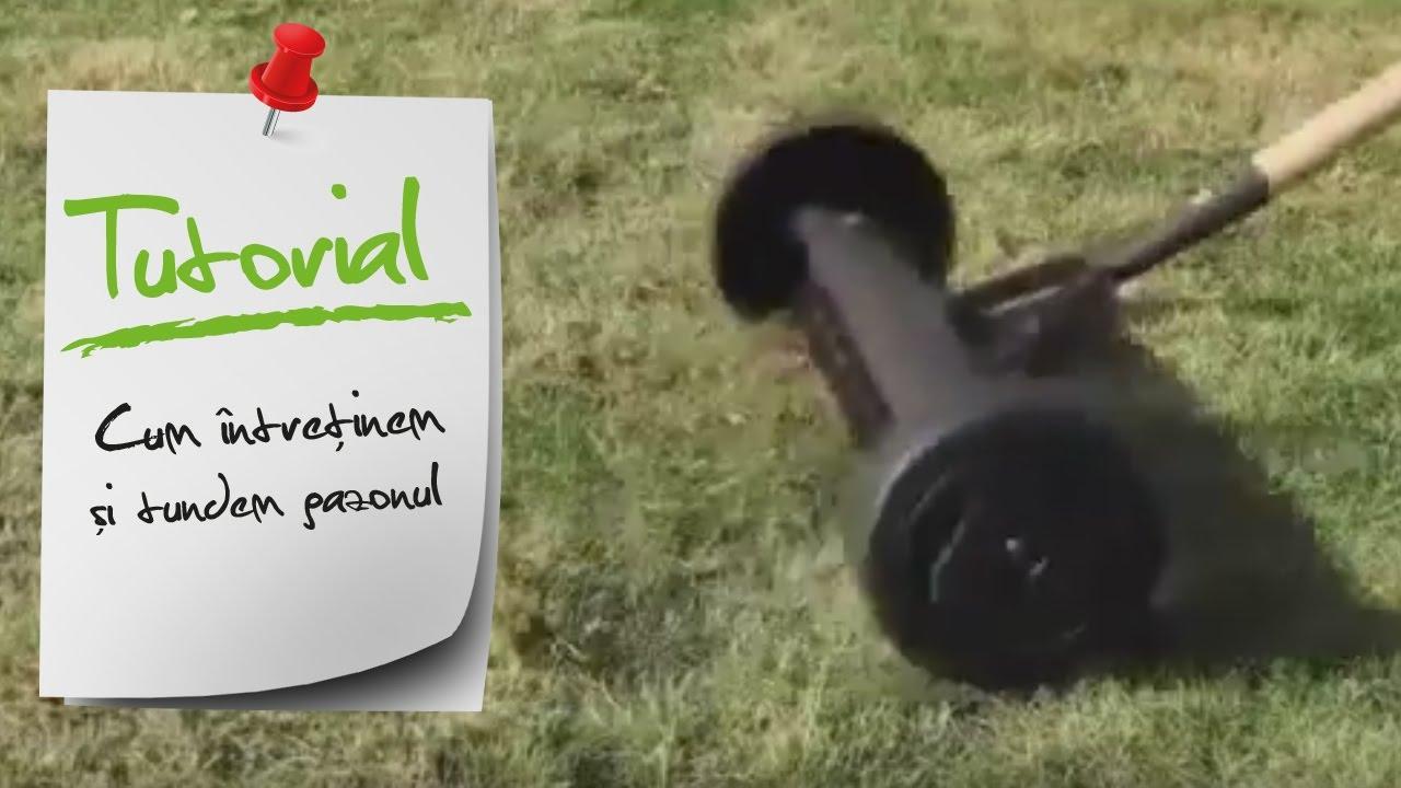 Cum Intretinem Si Tratam Gazonul Ghid Video Leroy Merlin Romania