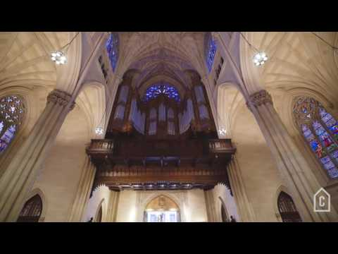 Saint Patrick's Cathedral | Curbed Tours