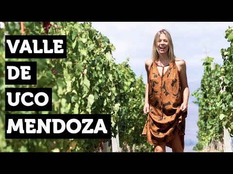 Wine Tasting In Mendoza | Argentina Travel Video