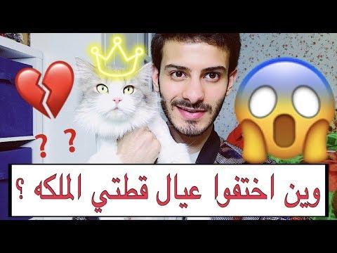 وين عيال الملكه 😢💔 اختفوا ؟ روتيني اليومي مع قطتي و معلومات مهمه بتفيدكم اكيد 👍🏻/ Mohamed Vlog