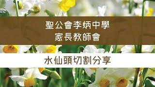 Publication Date: 2021-08-27 | Video Title: 聖公會李炳中學家長教師會 — 水仙頭切割分享