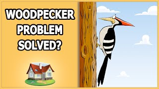 Woodpecker Problem Solved?