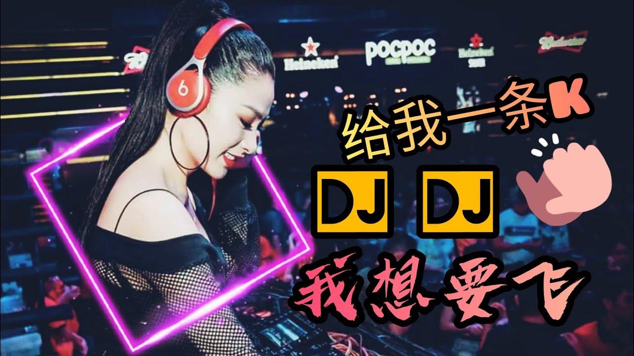 Download DJ DJ給我一條K、DJ DJ我想要飛 ft Nasi goreng remix