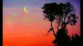 Auld Lang Syne - Sliver of Moon