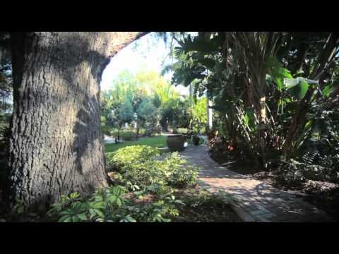The Art, Food, and Magic of St. Petersburg, Florida