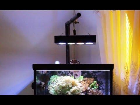 25 New Aqua Illumination Hydra Led Lights Youtube
