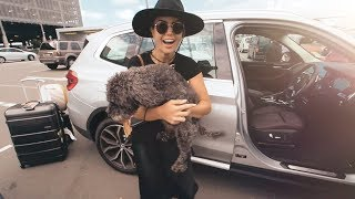 PUPPY GOES CRAZY SEEING HER MUMMY AGAIN!