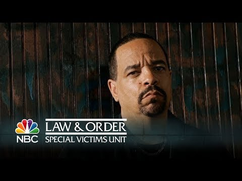 A Day in the Life of Detective Fin - Law & Order SVU