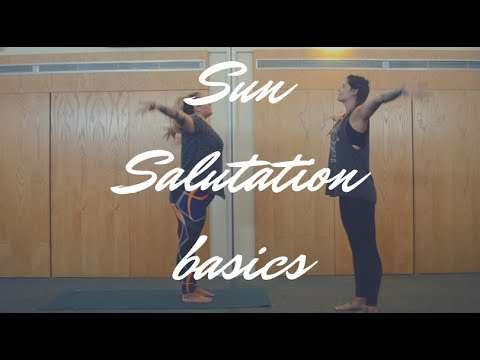 sun salutation basics  youtube
