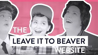 The Leave it To Beaver Website - Top 5 Worst Websites - Awkward Marketing