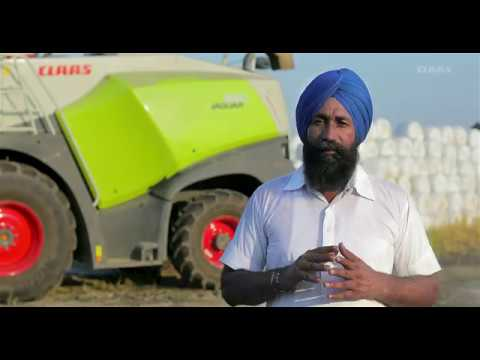CLAAS JAGUAR 850 Testimonial. Ludhiana, Punjab. (English Subtitles)