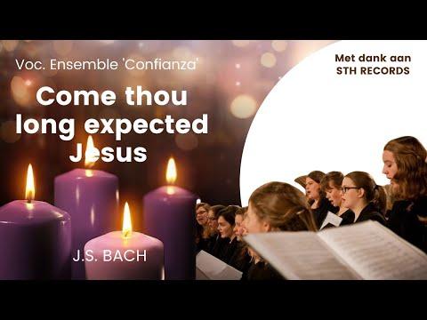 Kom Heere Jezus, kom!