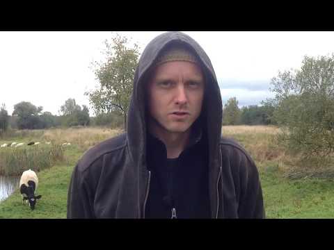 видео: Аренда земли/Личный опыт