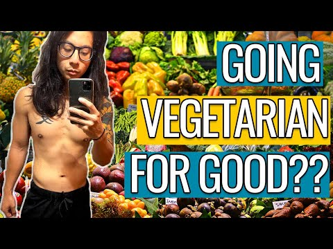 THE VEGETARIAN DIET PROS AND CONS | THOUGHTS ON VEGETARIANISM | TAI'S TAKE