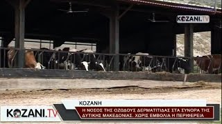 Σε συναγερμό η Δυτ. Μακεδονία για τη νόσο των βοοειδών
