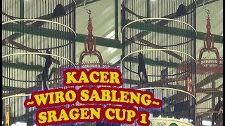 Video Lomba Burung KACER WIRO SABLENG Sragen Cup 1 download MP3, 3GP, MP4, WEBM, AVI, FLV April 2018