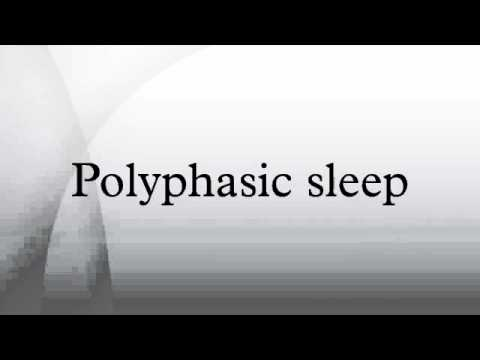 Polyphasic sleep