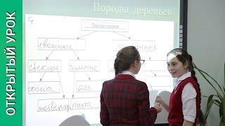 «Леса России» УМК И.И Бариновой. Открытый урок географии 8 класс #09