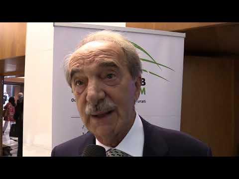 """Italian Arab Forum, Valli: """"Dobbiamo lavorare con questi mercati"""""""