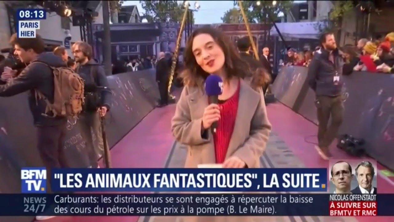 """L'avant-première mondiale du film """"Les animaux fantastiques"""" avait lieu jeudi à Paris"""