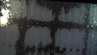 Isolation Video #13 - Nicole Rampersaud