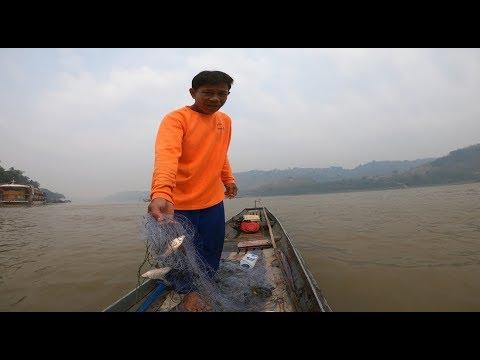 หาปลาแม่น้ำโขง หลวงพระบาง สปป.ลาว