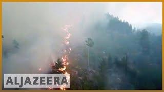 🇸🇪 Sweden wildfires: Worst drought in 74 years | Al Jazeera English