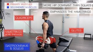 The Best Science-Based Leg Workout for Growth (Glutes/Quads/Hams)