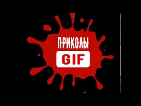 Приколы Gif новинки 2017