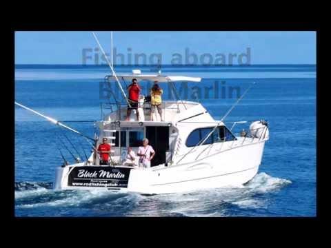 - Eran's GT: Over 20kg GT Released on jigging in Rodrigues Island - Rod Fishing Club.