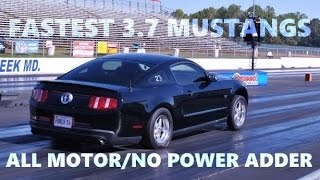 FASTEST ALL MOTOR 3.7 V6 MUSTANGS // EXTENDED VERSION // QUICKEST 1/4 MILE TIMES