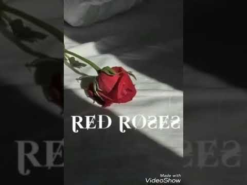 RED ROSES LIL SKIES ft. LONDON CUBE