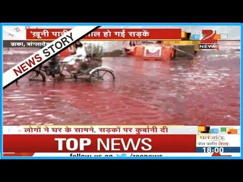 Drainage failure in Dhaka made to flee Eid sacrifice blood on roads