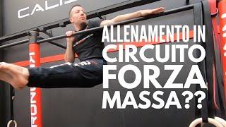Mettere su Forza e Massa con i Circuiti d'Allenamento??