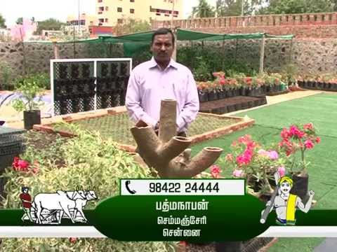 hydrophonic vegetable cultivation  padmanaban 9842224444
