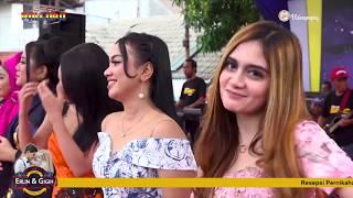 NEW PALLAPA Bimbang - All Artis Live Muarareja Tegal