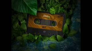 Bo Qus - Bien Agiter (1997) Intelligent Jungle