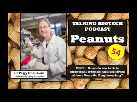 Talking Biotech 054 -- Peanut Breeding; Talking about GMO Technology