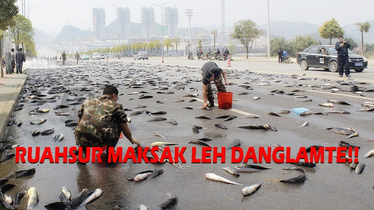 Download Ruahsur maksak leh danglamte!!